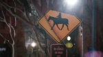 More visual easter eggs as the horseman swings his fire-tipped axe across a nearby street sign.